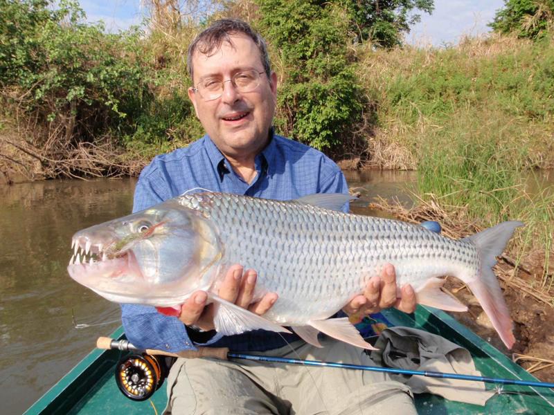 eliot and tigerfish 2 compressed